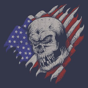 skull usa flag vector illustration