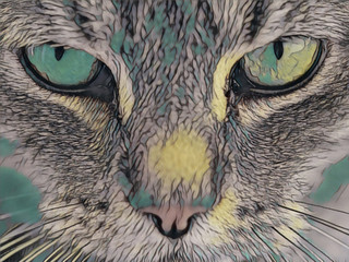 Foto op Plexiglas Hand getrokken schets van dieren Close up cat - illustrated