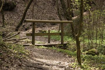 Eine Holzbrücke im Schnittlinger Loch in Spalt bei Roth, Fränkisches Seenland