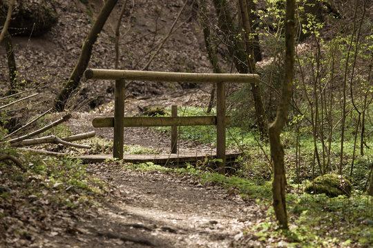 Eine Holzbrücke im Schnittlinger Loch in Spalt bei Roth, Zigeunerloch, Fränkisches Seenland