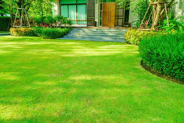 Poster Garden Green grass, Modern house with beautiful landscaped front yard, Lawn and garden blur background., The design concept for background, garden with green lawn and garden