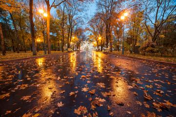 Fototapeten Dunkelbraun City autumn park after rain