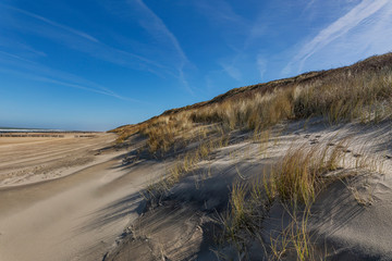 Domburg - View to Grass Dunes with only a few people on the Beach / Netherlands