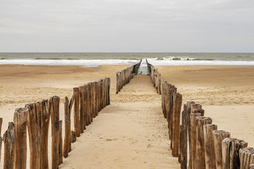 Domburg - Close-up to Timber Piles at a cloudy day / Netherlands