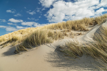 Domburg - View from Beach to Grass Dunes /Netherlands