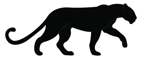 Big black panther, illustration, vector on white background.