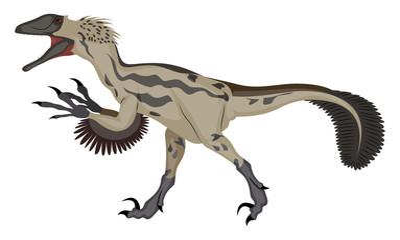 Deinonychus, illustration, vector on white background.