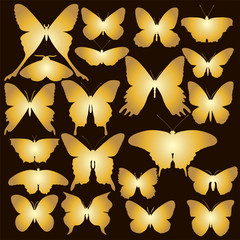 Set of gold  butterfly. Vector illustration.