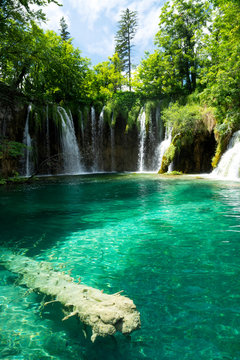 Detail of Plitvice National Park, Croatian