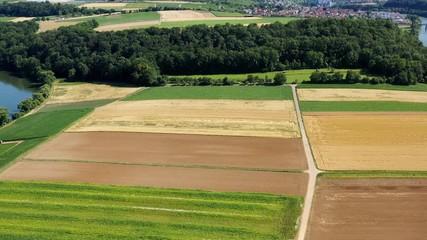 Fototapete - Kirchheim am Neckar