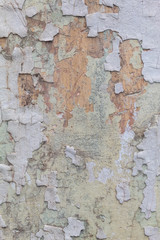 Poster de jardin Vieux mur texturé sale Old Weathered White Painted Peeling Wall Texture