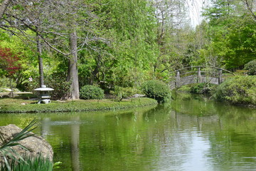 River and Moon Bridge of Fort Worth Japanese Garden