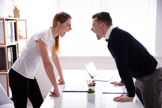 Businesspeople Shouting At Each Other
