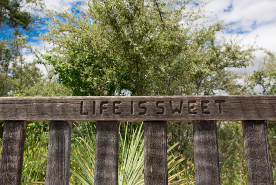 Life is sweet bench