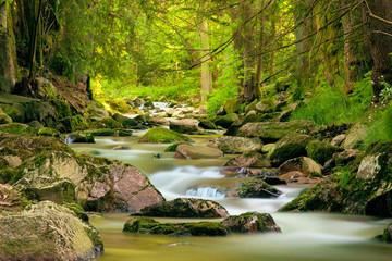 Langzeitbelichtung Gewässer im Erzgebirge an der Bockau, Fluss mit Steinen, Wald, Lichtstimmung