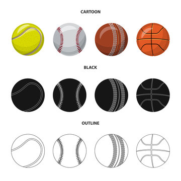 Vector design of sport and ball symbol. Collection of sport and athletic stock vector illustration.
