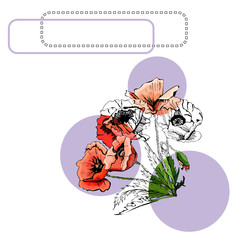 Collection with color and monochrome bouquets of poppy flowers with leaves, circles and frames. Hand drawn ink and colored sketch isolated on white background.
