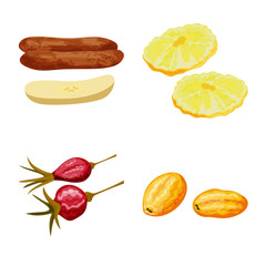 Fototapete - Isolated object of fruit and dried sign. Collection of fruit and food stock symbol for web.