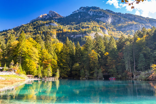 Nature park Blausee or blue lake in Kandersteg, Switzerland, autum color with clear water