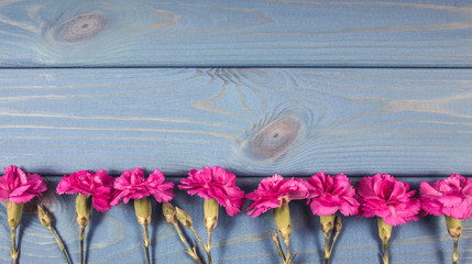 Floral background. Carnation flowers on a wooden background. A place for an inscription.