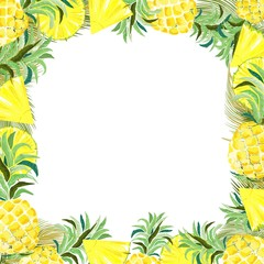 Pineapple and Slices Watercolor Summer Frame Vector Background