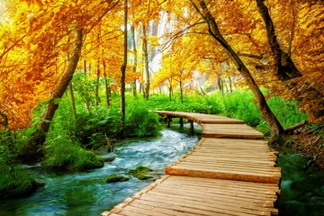 Beautiful wooden path trail for nature trekking with lakes and waterfall landscape in Plitvice Lakes National Park, UNESCO natural world heritage and famous travel destination of Croatia. Fotomurales