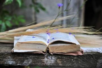 książka, Pismo Święte