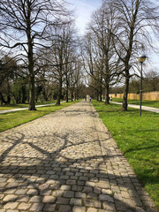 Cobblestone pedestrian pathway with shadow of trees, Alden-Biesen, Belgium, Europe