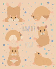 Hamsters yoga poses and exercises. Cute cartoon clipart set
