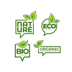 Fototapeta doodle organic leaves emblems, elements,  frames and logo obraz