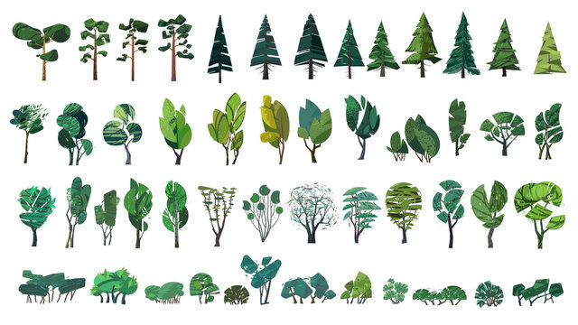 huge collection of stylized isolated green plants for your illustrations