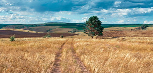 Central Russia agricultural countryside with hills and country road. Summer landscape of the Samara valleys. Russian countryside. High resolution file for large format printing.