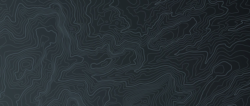 Terrain map. Contours trails, image grid geographic relief topographic contour line maps cartography texture, vector illustration