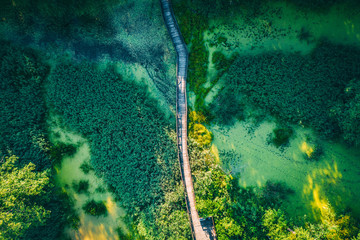 Aerial top view of wooden footbridge pathway over marshy or swampy river with vegetation thickets and green forest, summer travel Wall mural