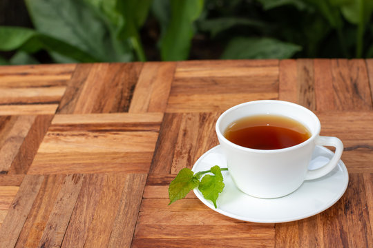 Mulberry leaf tea in cup  placed on a wooden floor Hot, aromatic, ready to drink