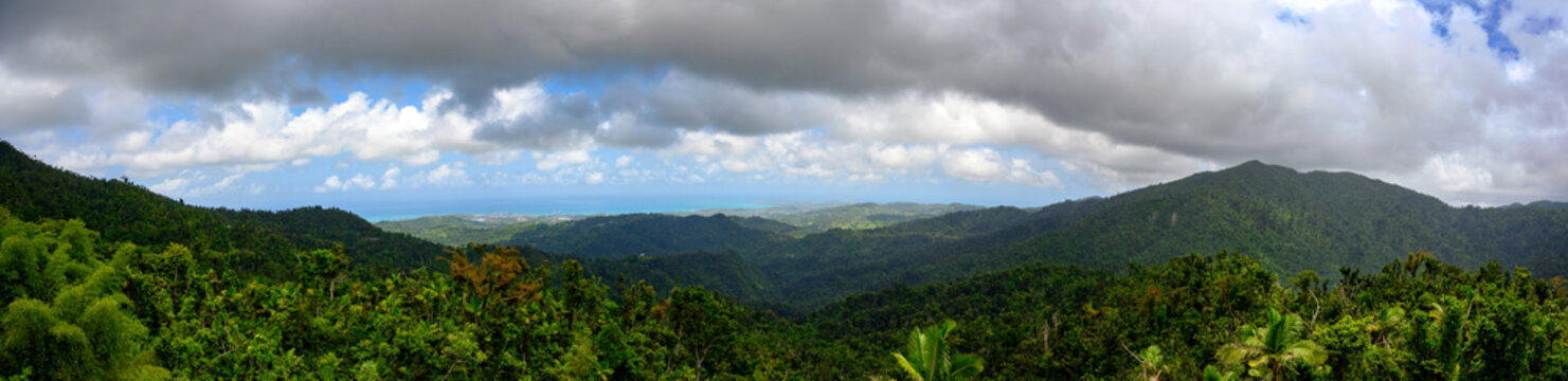 Panoramic of El Yunque National Forest, Puerto Rico