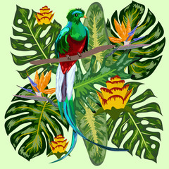 Green tropical bird Great resplendent quetzal sitting on a branch against the backdrop of a tropical foliage and flowers, design, rare, endangered species, red data book, security