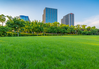 Wall Murals Green Afternoon Lawn Green space and business building, Daning Tulip Park, Shanghai, China