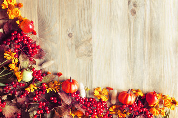 Autumn background with seasonal autumn nature berries, pumpkins, apples and flowers, free space