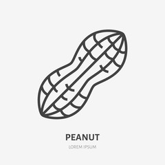 Peanut flat line icon. Vector thin sign of nut, healthy food outline illustration