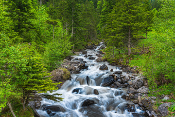 Wild part of the Alpbach river close to Kandersteg
