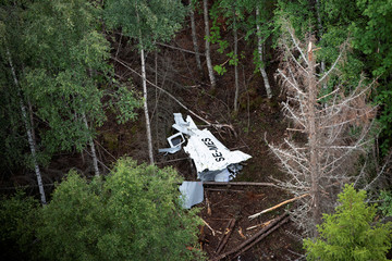 Wreckage of the skydiving aircraft lies in the wood on Storsandskar island in Ume river, outside Umea