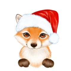 Cute cartoon fox in Santa Hat, isolated on white background