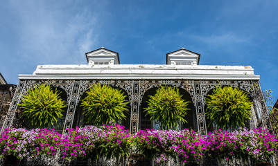 Flowers in French Quarter of New Orleans Fotomurales