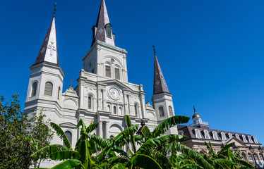 St Louis Cathedral in Jackson Square New Orleans Fotomurales