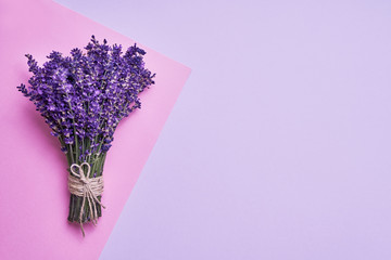 Bunch of fresh lavender on pink background. Violet flowers. Greeting floral card with place for text. Top view, copy space.
