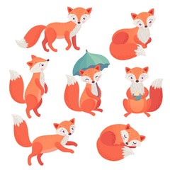 Wall Mural - Fox set hand drawn style. Cute