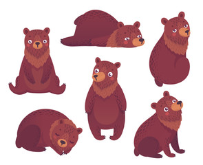 Wall Mural - Bear set hand drawn style.