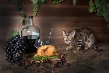 Bengal cat on the table and still life with fried chicken