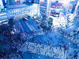 Fototapete - 夕暮れの渋谷駅前交差点
